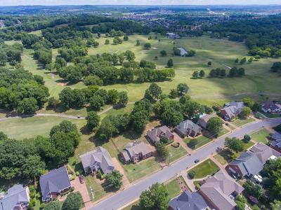 Hendersonville Single Family Home For Sale: 213 Spy Glass Way