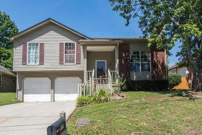 Antioch Single Family Home For Sale: 721 Rocky Mountain Ct
