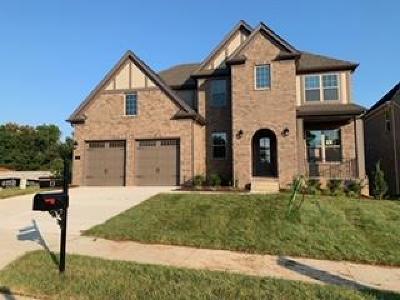 Mount Juliet Single Family Home For Sale: 13 Elliott Circle #97