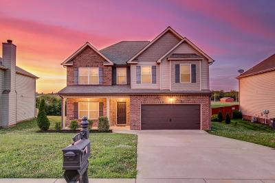 Clarksville Single Family Home For Sale: 1109 Henry Place Blvd