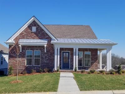 Mount Juliet Single Family Home For Sale: 415 Butler Road, Lot #207