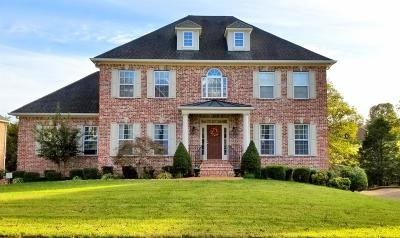 Hendersonville Single Family Home For Sale: 1018 Island Brook Dr