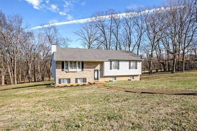Maury County Single Family Home For Sale: 1824 Grace Dr