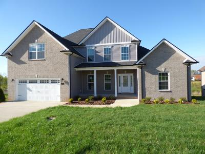 Clarksville Single Family Home For Sale: 215 Melbourne Dr