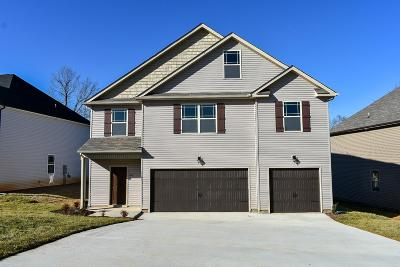 Clarksville Single Family Home For Sale: 1181 Henry Place Blvd