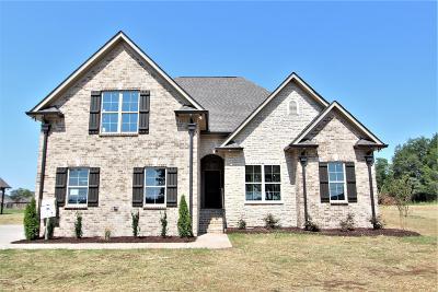 Lebanon Single Family Home For Sale: 6600 Murfreesboro Rd. #31-C