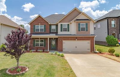 Clarksville Single Family Home For Sale: 1128 Henry Place Blvd