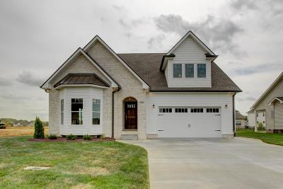Clarksville Single Family Home For Sale: 409 Barr Dr