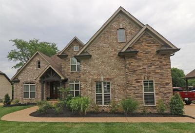 Mount Juliet Single Family Home For Sale: 1235 Mires Rd