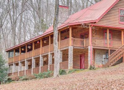Robertson County Single Family Home For Sale: 3925 Turnersville Rd