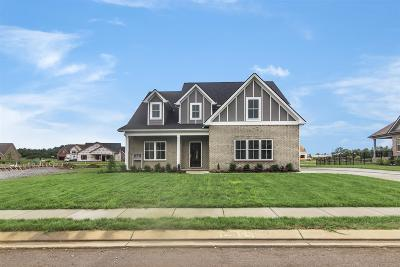 Murfreesboro Single Family Home For Sale: 4013 Gilreath Place (Lot 94)