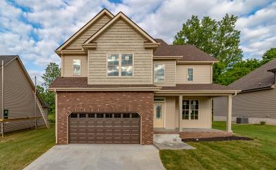 Clarksville Single Family Home For Sale: 317 Chase Dr