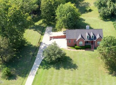 Hendersonville Single Family Home For Sale: 2680 Long Hollow Pike