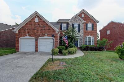 Nashville Single Family Home For Sale: 3036 Brookview Forest Dr