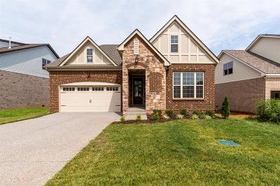 Murfreesboro Single Family Home For Sale: 1213 Batbriar Rd (46)