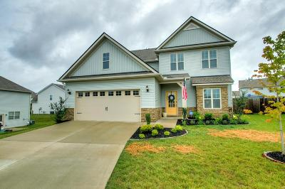 Spring Hill Single Family Home For Sale: 2010 Princess Ct