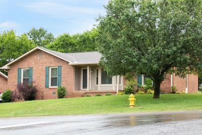 Hendersonville Single Family Home For Sale: 100 Ryan Dr