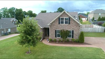 Spring Hill Single Family Home For Sale: 2300 Dewey Dr