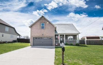 Clarksville Single Family Home For Sale: 962 Silty Dr