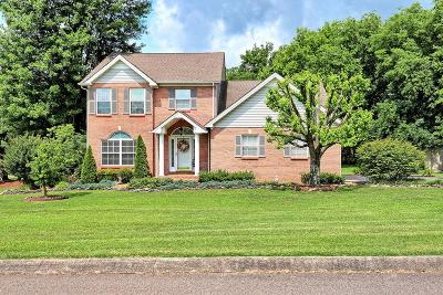 Spring Hill Single Family Home For Sale: 2105 Sue Ln