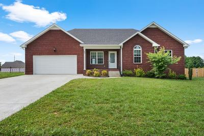 Portland Single Family Home Active Under Contract: 226 Middle Dayle Dr