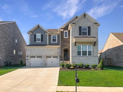 Mount Juliet Single Family Home For Sale: 3008 Elliott Dr