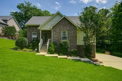 Hendersonville Single Family Home For Sale: 130A Forest Retreat