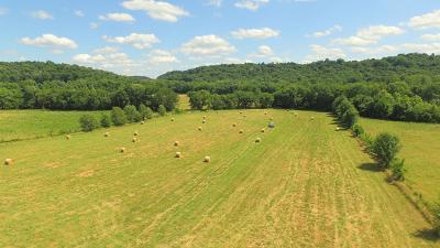 Franklin Farm For Sale: Harpeth West Rd
