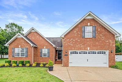 Rutherford County Single Family Home For Sale: 138 Silver Dollar St