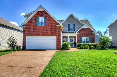 Spring Hill Single Family Home Active Under Contract: 1732 Freiburg Dr