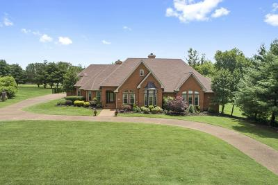 Hendersonville Single Family Home For Sale: 122 Skyview Dr