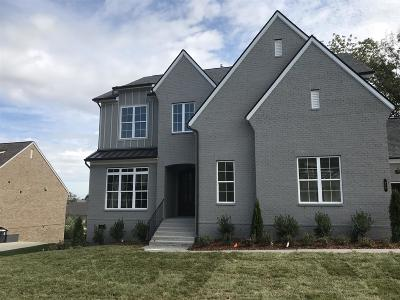 Nolensville Single Family Home For Sale: 416 Oldenburg Rd.
