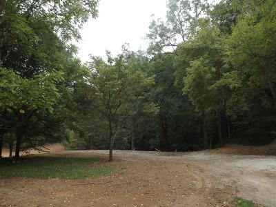 Pulaski Residential Lots & Land For Sale: 1649 Fogg Hollow Rd