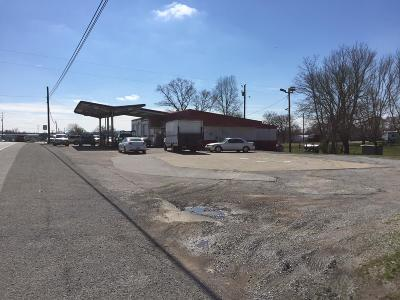 Williamson County Commercial For Sale: 8351 Horton Hwy