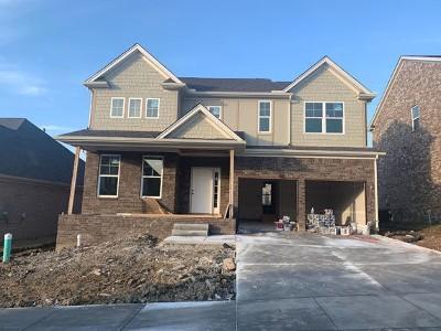 Mount Juliet Single Family Home For Sale: 7006 Bennett Dr, Lot 505