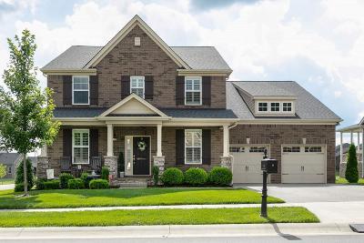 Nolensville Single Family Home For Sale: 723 Eldon Ln