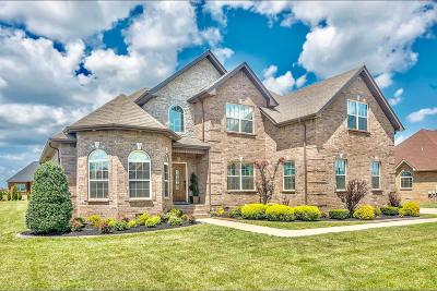 Clarksville Single Family Home For Sale: 3192 Carrie Taylor Circle