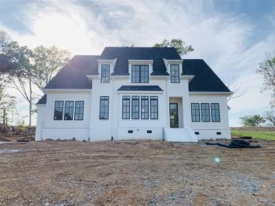 Nolensville Single Family Home For Sale: 108 Hadley Reserve Ct *lot 3*