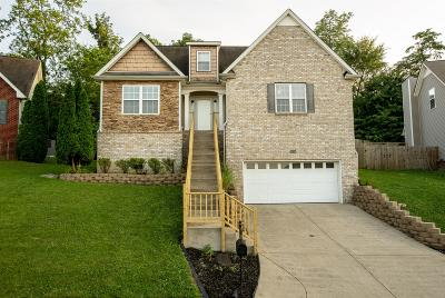 Antioch Single Family Home For Sale: 2605 Mountain Dale Ct