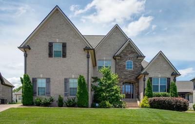 Spring Hill Single Family Home For Sale: 7007 Kidman Ln