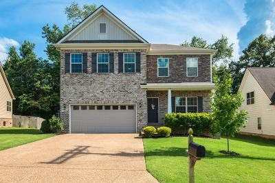 Spring Hill Single Family Home For Sale: 1122 Golf View Way