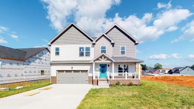 Clarksville Single Family Home For Sale: 92 Reserve At Sango