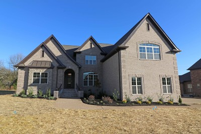 Mount Juliet Single Family Home For Sale: 1705 Amhurst Point