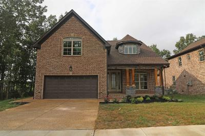 Mount Juliet Single Family Home For Sale: 512 Hollow Tree Trail