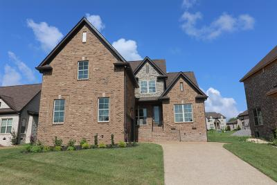 Mount Juliet Single Family Home For Sale: 200 Karen Drive