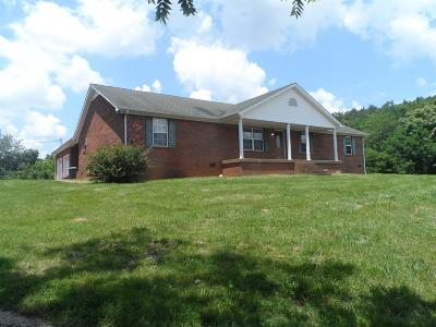 Pulaski Single Family Home For Sale: 405 Milky Way Dr