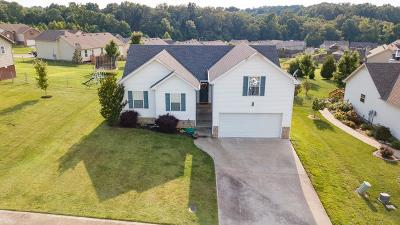 Clarksville Single Family Home For Sale: 503 Cedar Valley Dr