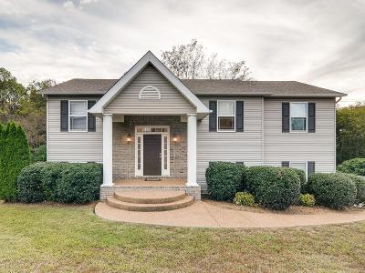 Spring Hill  Single Family Home For Sale: 611 Natalie Ln