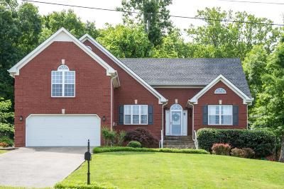 Smyrna Single Family Home For Sale: 3707 Henricks Hill Drive