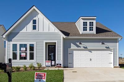 Spring Hill Single Family Home For Sale: 450 Rangeland Rd Lot 99
